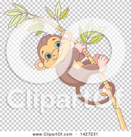 Transparent clip art background preview #COLLC1427231