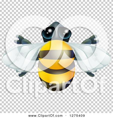 Transparent clip art background preview #COLLC1275409