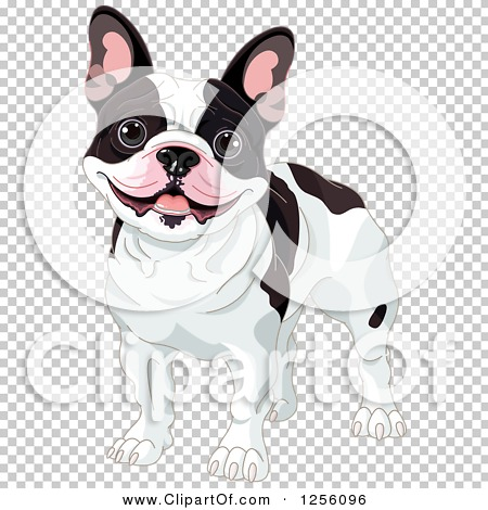 Transparent clip art background preview #COLLC1256096