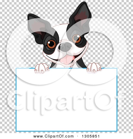 Transparent clip art background preview #COLLC1305851