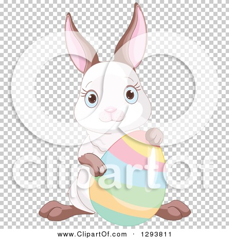Transparent clip art background preview #COLLC1293811