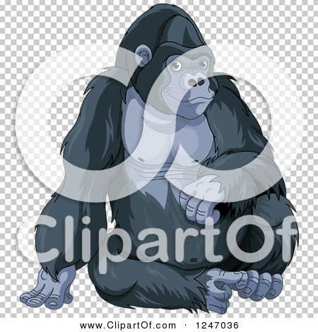Transparent clip art background preview #COLLC1247036