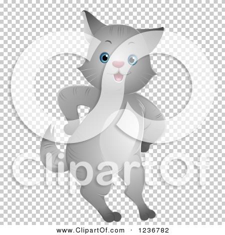 Transparent clip art background preview #COLLC1236782