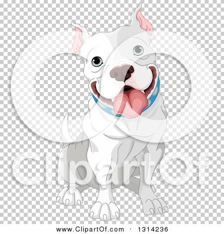 Transparent clip art background preview #COLLC1314236