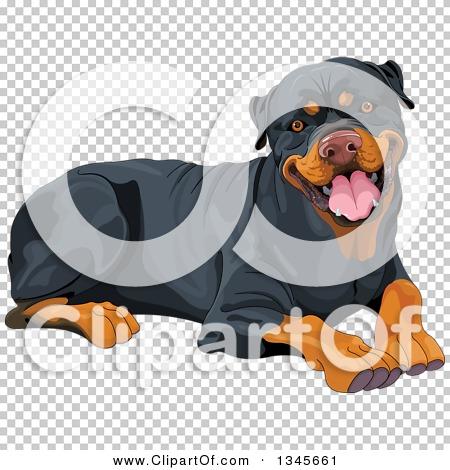 Transparent clip art background preview #COLLC1345661