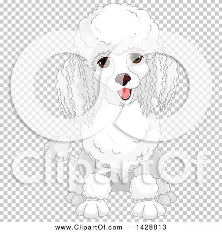 Transparent clip art background preview #COLLC1428813