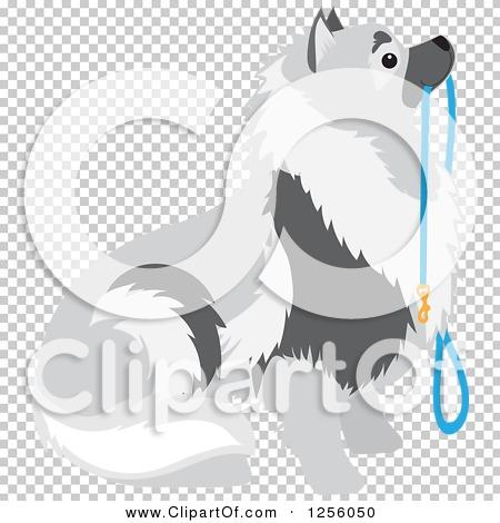 Transparent clip art background preview #COLLC1256050