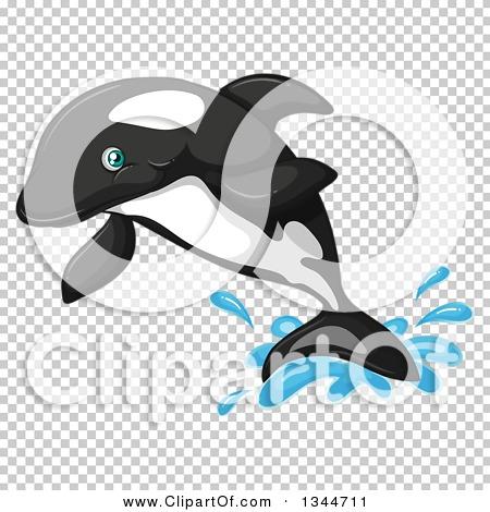 Transparent clip art background preview #COLLC1344711