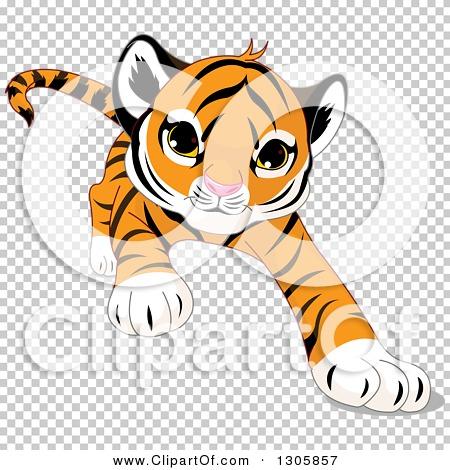 Transparent clip art background preview #COLLC1305857