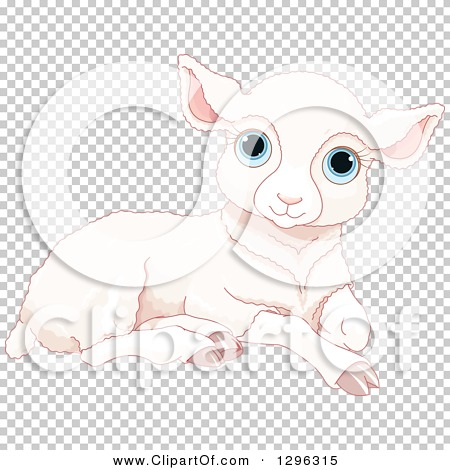 Transparent clip art background preview #COLLC1296315
