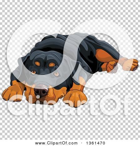 Transparent clip art background preview #COLLC1361470