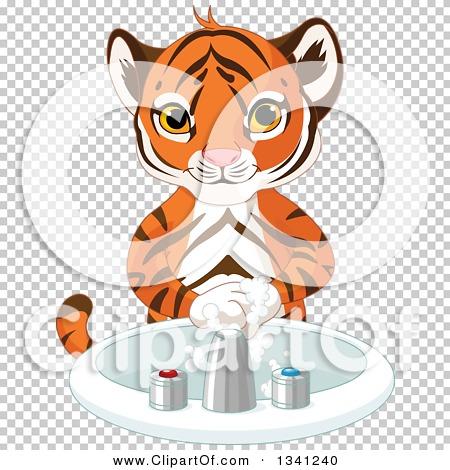Transparent clip art background preview #COLLC1341240