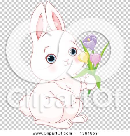 Transparent clip art background preview #COLLC1381859