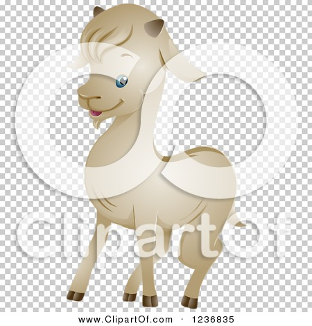 Transparent clip art background preview #COLLC1236835