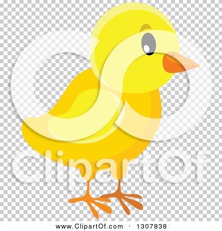 Transparent clip art background preview #COLLC1307838