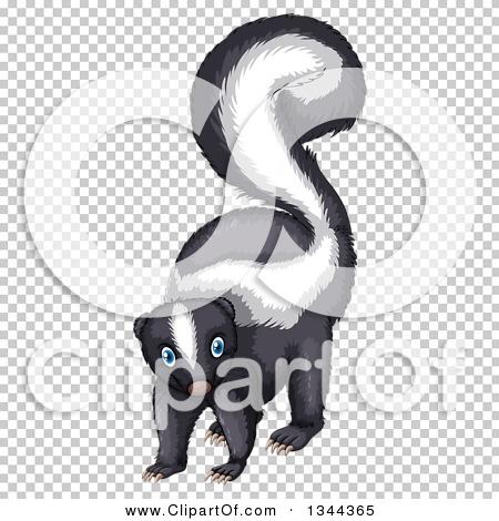 Transparent clip art background preview #COLLC1344365