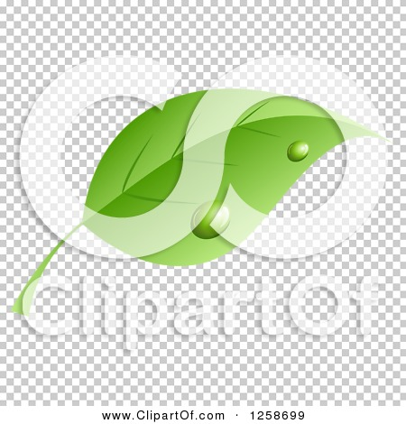 Transparent clip art background preview #COLLC1258699