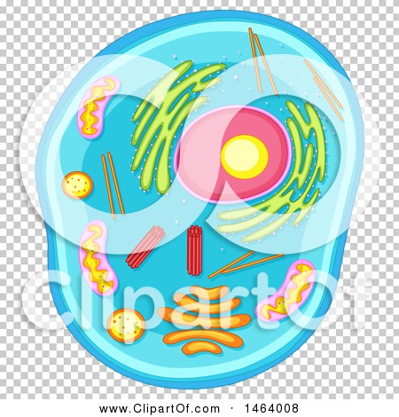 Transparent clip art background preview #COLLC1464008