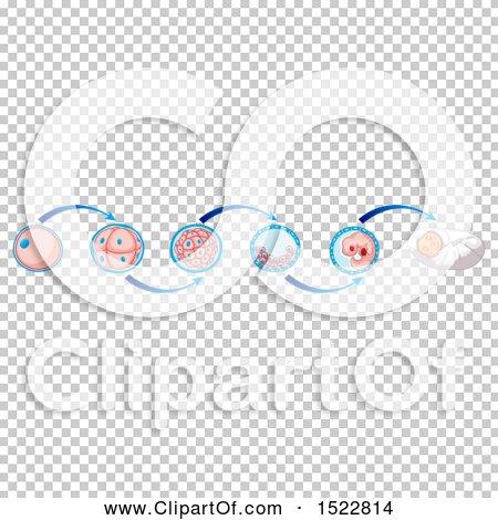 Transparent clip art background preview #COLLC1522814