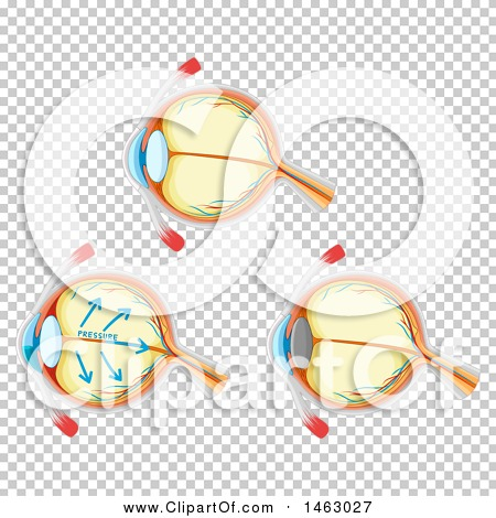 Transparent clip art background preview #COLLC1463027
