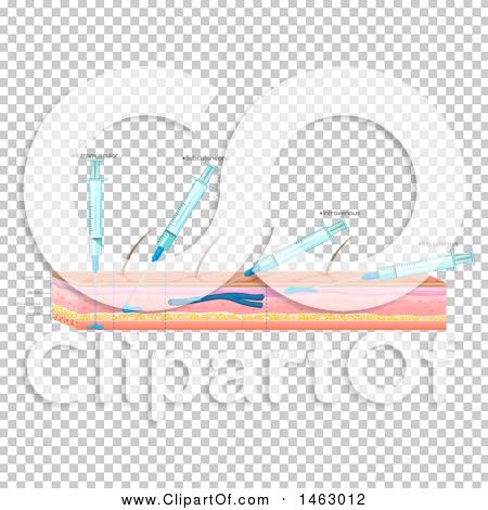 Transparent clip art background preview #COLLC1463012