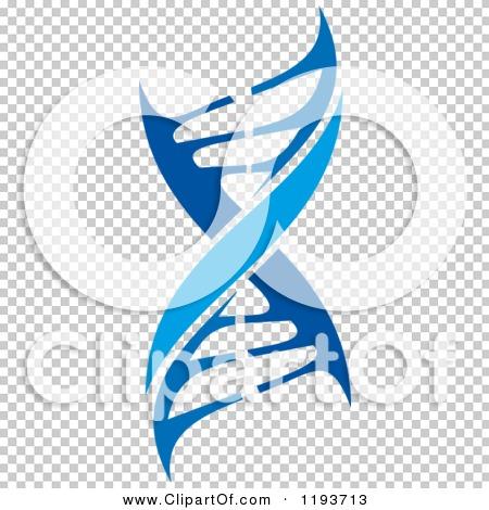 Transparent clip art background preview #COLLC1193713