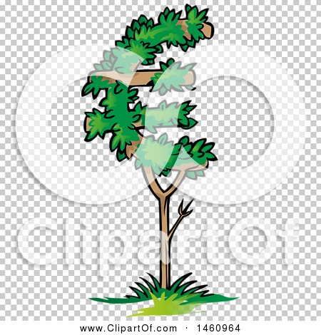 Transparent clip art background preview #COLLC1460964