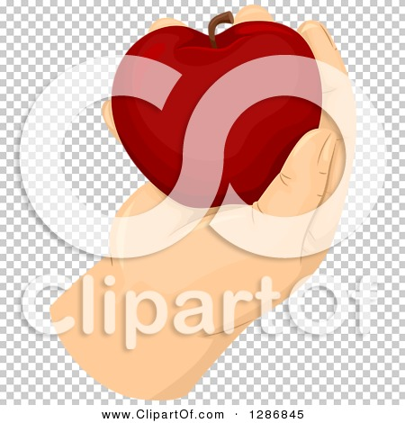 Transparent clip art background preview #COLLC1286845