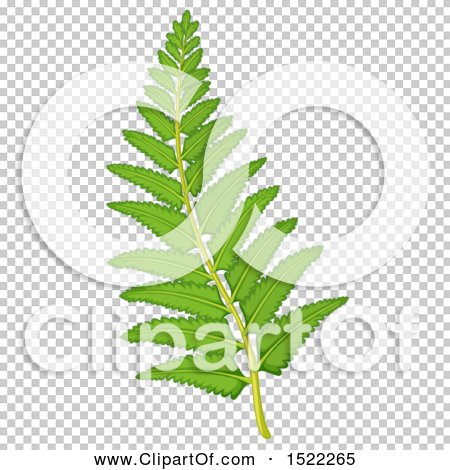 Transparent clip art background preview #COLLC1522265