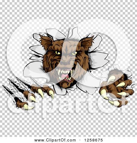 Transparent clip art background preview #COLLC1258675