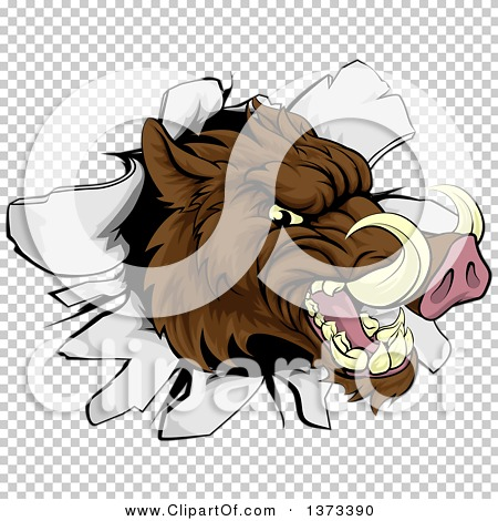 Transparent clip art background preview #COLLC1373390