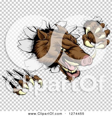 Transparent clip art background preview #COLLC1274455