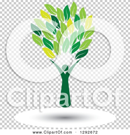 Transparent clip art background preview #COLLC1292672