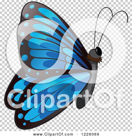 Transparent clip art background preview #COLLC1226069