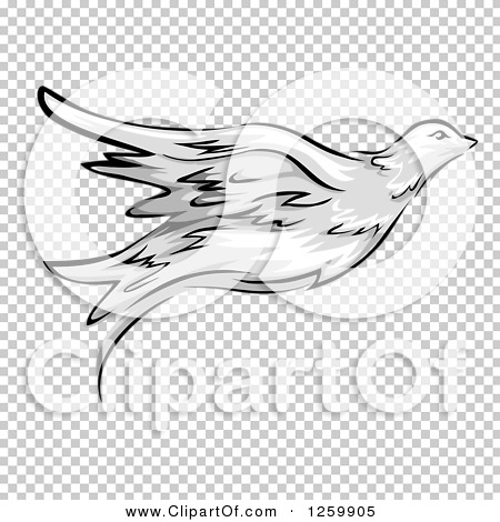 Transparent clip art background preview #COLLC1259905