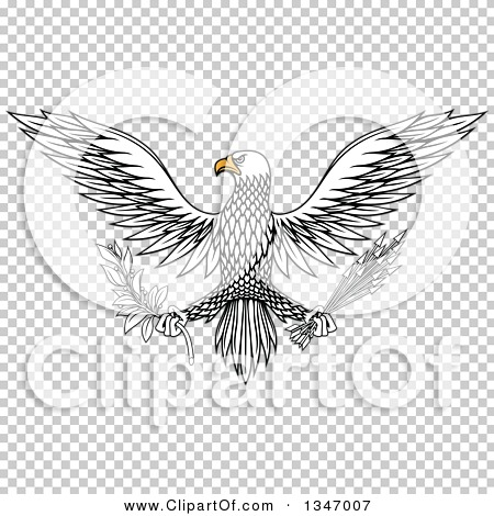 Transparent clip art background preview #COLLC1347007
