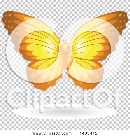 Transparent clip art background preview #COLLC1435412