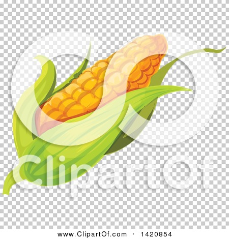 Transparent clip art background preview #COLLC1420854