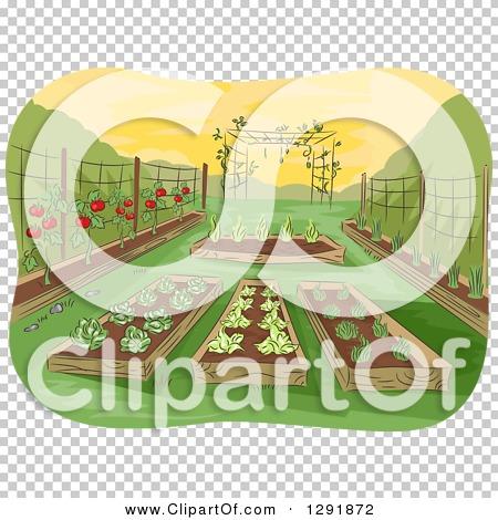 Transparent clip art background preview #COLLC1291872