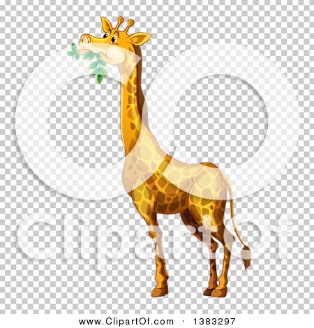 Transparent clip art background preview #COLLC1383297