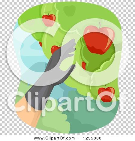 Transparent clip art background preview #COLLC1235000