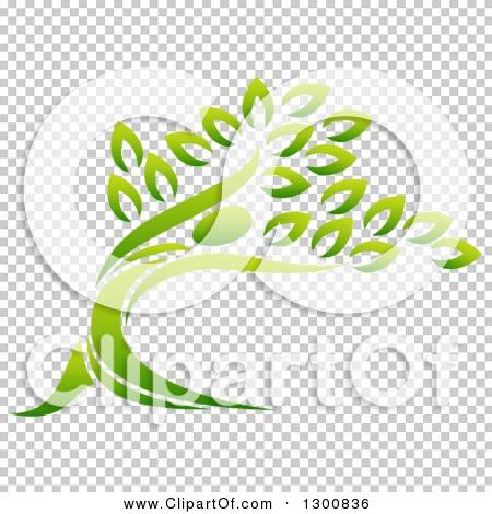 Transparent clip art background preview #COLLC1300836