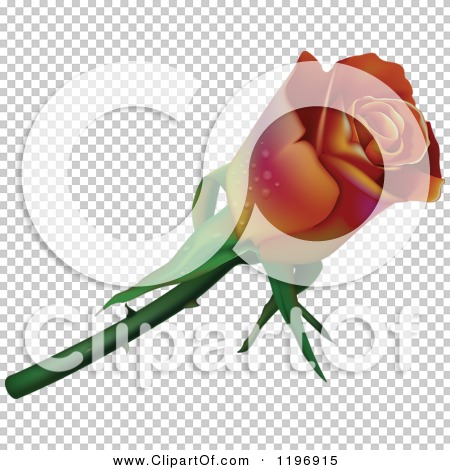 Transparent clip art background preview #COLLC1196915