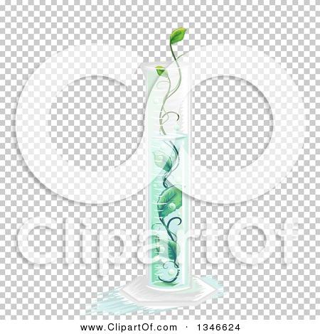 Transparent clip art background preview #COLLC1346624