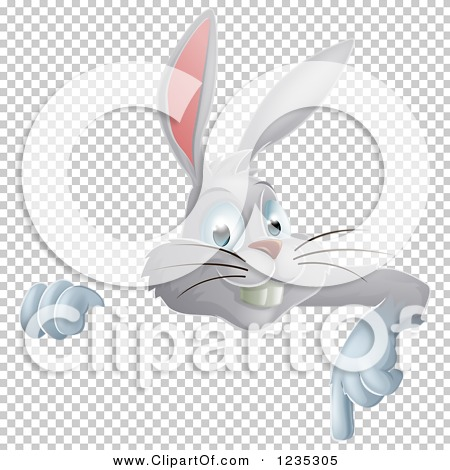 Transparent clip art background preview #COLLC1235305