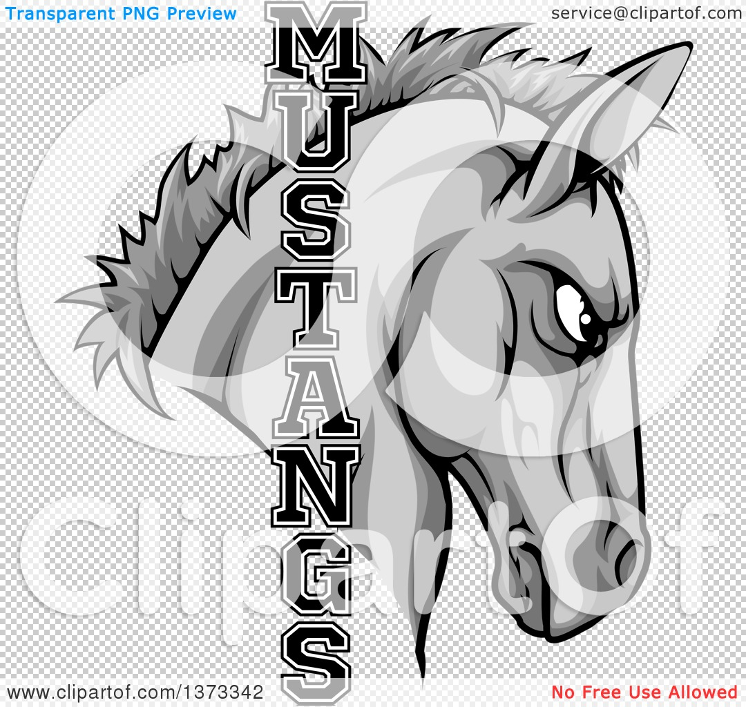 Clipart of a Gray Mustang Horse Mascot with Text - Royalty Free ...