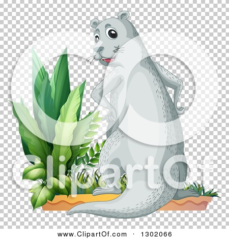 Transparent clip art background preview #COLLC1302066
