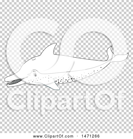 Transparent clip art background preview #COLLC1471266
