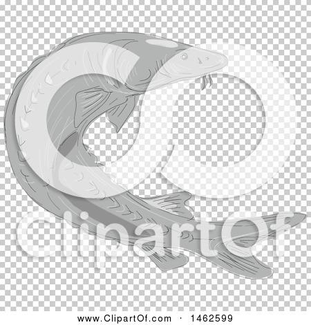 Transparent clip art background preview #COLLC1462599