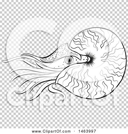 Transparent clip art background preview #COLLC1463997
